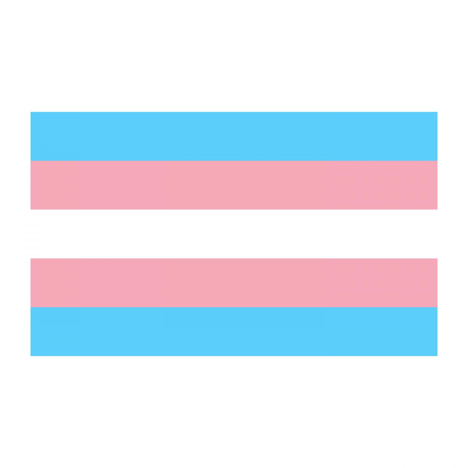 Bandeira trans com as riscas brancas, rosa e azuis